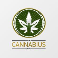 Ανθοί Κάνναβης 3g   Hemp Flowers 3g Cannabius